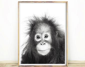 Orangutan Print, Kids Gift Idea, Baby Shower Gift, Animal Photography,  Kids Room Decor, Large Printable Poster, Instant Download#468