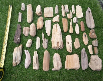Numerous Beach Driftwood  pieces / sculpture / arts and craft