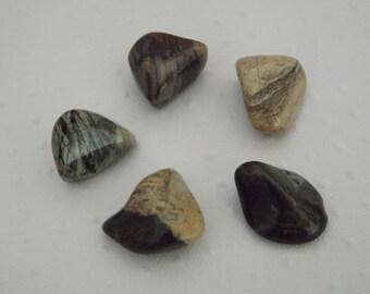 Jaspe Feuille d'argent  - Lot de 5 pierres naturelles minérales - Pierres de collection - pierres de soin et de bien être - lithothérapie