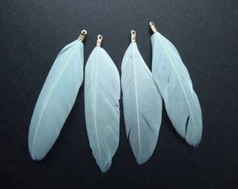 4 blue feathers approximately 8.5 cm