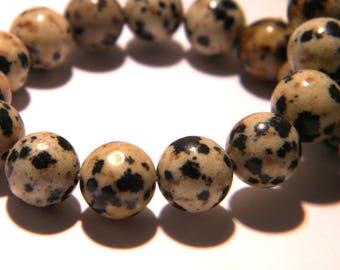10 pearls 8mm - round - beige - gem stone G199 Dalmatian Jasper