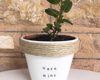 We're mint to be   Funny pot plant gift   with a pun   wedding   engagement   present
