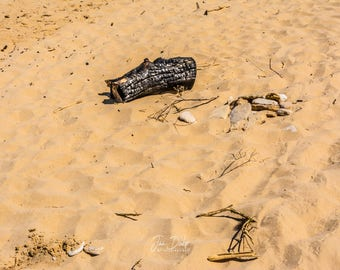 Remains of a beach party
