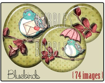 Digital collage sheets - Birds Printable Images for Jewelry Making