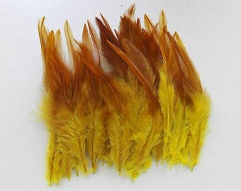 set of 50 mixed yellow feathers 10-15cm