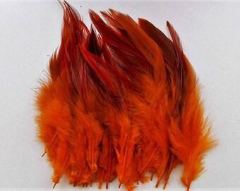 set of 50 mixed orange feathers 10-15cm