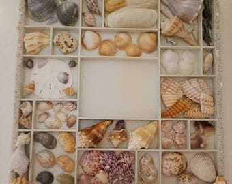 Shell art Collage. Place your beach memories (picture) in the center.