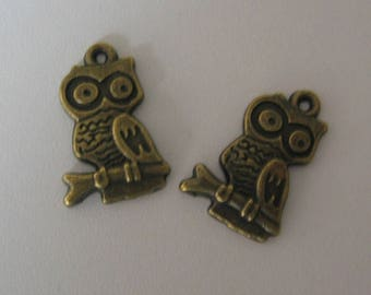 Set of 2 bronze charms - dimensions 22x11mm (BR079)