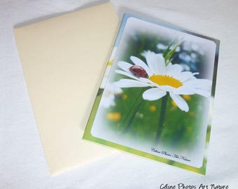 """Double 10 5x15cm made from a photo of a little Ladybug on a Daisy """"Ladybug and Daisies"""""""