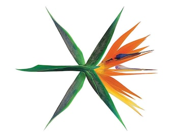 EXO - The War (4th Album) [KOREAN /  ver.] CD+Photobook+Photocard+Folded Poster+Free Gift