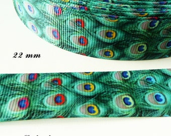 Ribbon grosgrain effect feather Peacock 22 mm sold by 50 cm