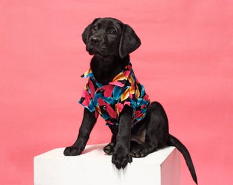 Dog Shirt | The Summer Nights Shirt | Hawaiian Dog Shirt | Dog Clothes | Dog Apparel | Dog Shirts for Dogs | Pet Clothing