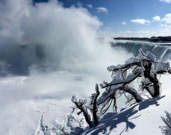 Frozen tree, snow and mist in front of Niagara Falls, Canada. Travel photo. Digital Download. Waterfalls and ice.