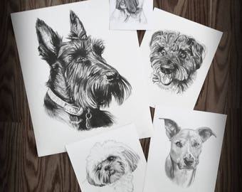 A beautiful pet portrait makes a great gift!