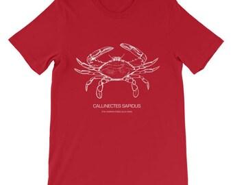 Callinectes Sapidus - The Common Edible Blue Crab