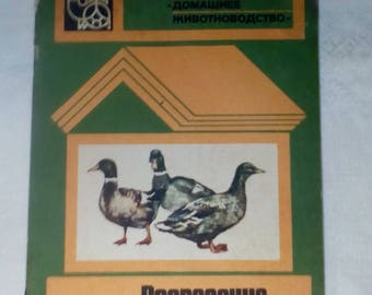 Cultivation and breeding of ducks. Book Manual in Russian 1985. vintage. Утки