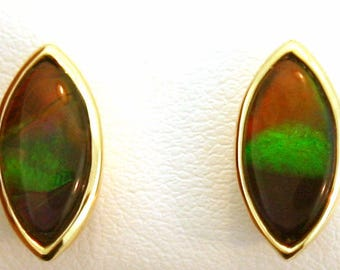 Pair of  Marquise Shaped Canadian Ammolite set in 14k Yellow Gold