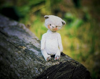 Author white teddy bear