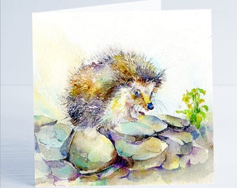 Florance  the Hedgehog- Greeting Card - Taken from an original Sheila Gill Watercolour Painting.