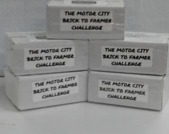 The Motor City Brick to Farmer Challenge