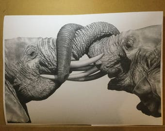 Double elephants graphite drawing