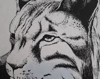 A copy of an original drawing if a Lynx drawn in ink.