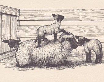 1980s vintage notecard -- design of sheep and lambs by Long Winter Farm in Vermont
