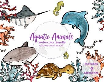 Watercolor Sea Animals Clipart, Aquatic animals, Under the sea, Ocean life, Shark, Dolphin, Fish, Coral