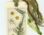 pressed flowers, nature collage, bookmark, dried flower art, tag art, beautiful fibers, nature bookmark2