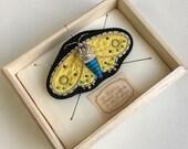 Gorgeous handmade black moth brooch medium