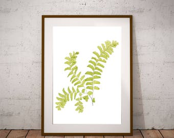 Printable Poster Art, Maidenhair Fern Large Art,  Woodland Art, Fern Digital Print, Minimalist Art, Rustic Decor, X-Ray Effect