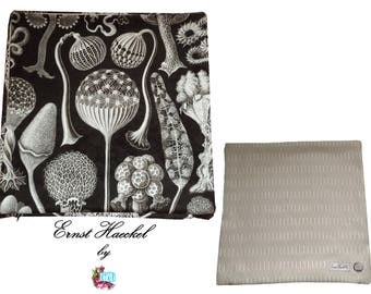 Pillow cover ★ Ernst Haeckel ★ No. 4