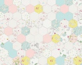 20% OFF Riley Blake Designs, Serendipity by Minki Kim Hexagon White