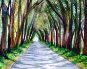 kauai tree tunnel watercolor painting koloa tunnel of trees original watercolors kauai artist marionette kauai arts gifts for him