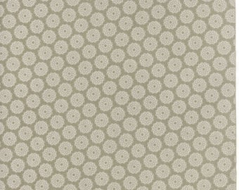 Project Red (5680 24) Taupe Circles by Sweetwater