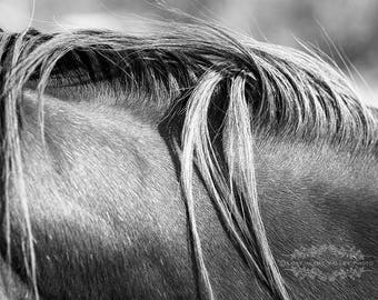 Rustic Wall Decor, Farmhouse Decor, Horse Photograph, Fine Art Photography, Equestrian Print, Black and White Photo, Monochromatic, Grey