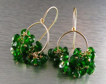 Chrome Diopside and Gold Filled Cluster Earrings