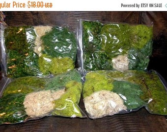 Save25% Fern Moss-Reindeer Moss-Mood Moss- Preserved Moss for terrariums with no Fuss-One Gallon Bag full