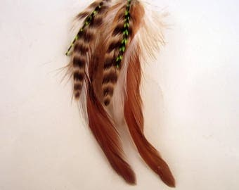 feather earrings hand made Color me natural lime grizzly.