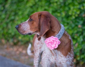 flower collar, girly dog collar, flower dog accessory, crocheted flower, special occasion dog accessory