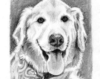 5x7 Custom Pet Portrait in Graphite Pencil
