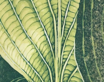 Hosta linocut reduction print moku haga fine art print