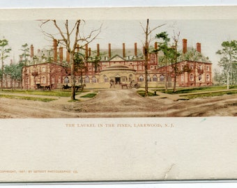 The Laurel in The Pines Hotel Lakewood New Jersey 1901 PMC postcard