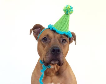 Dog Party Hat, Party Hat for Dogs, Gotcha Day Hat, Dog Hat