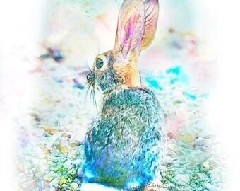 Rabbit print, rabbit decor, rabbit baby nursery, forest animals, nursery forest print, rabbit print art, turquoise, pink, bunny print