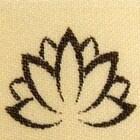 LotusandNightshade