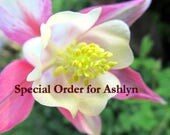 Special Order for Ashlyn