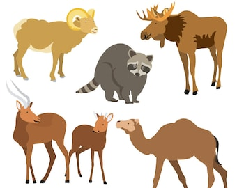 Animal Clipart, Wildlife Clipart, Moose Clipart, Antelope Clipart, Sheep Clipart, Raccoon Clipart, Camel Clipart, Digital Download