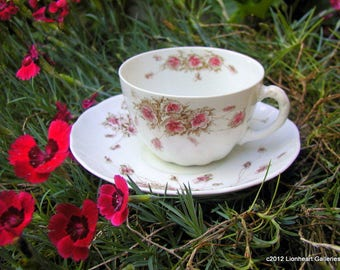 Antique Royal Doulton Cup and Saucer May Pattern 1875 Vintage Floral Transferware Tea Cup
