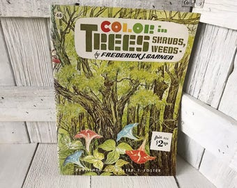 Vintage book Color in Trees, Shrubs, Weeds Walter Foster art instruction 1960s- free shipping US